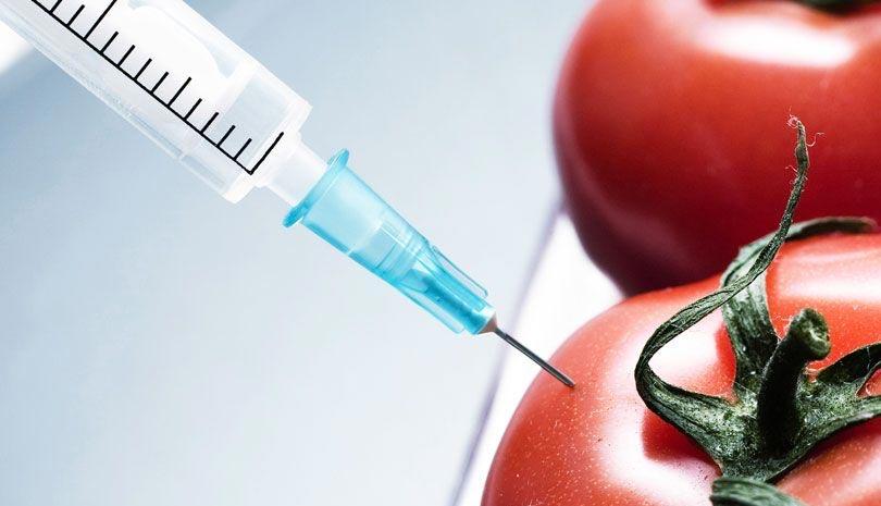 Η χειραγώγηση του κόσμου των γενετικά τροποποιημένων τροφίμων