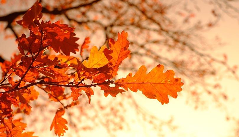 ΕΜΥ: Ο καιρός σήμερα 20 Οκτωβρίου